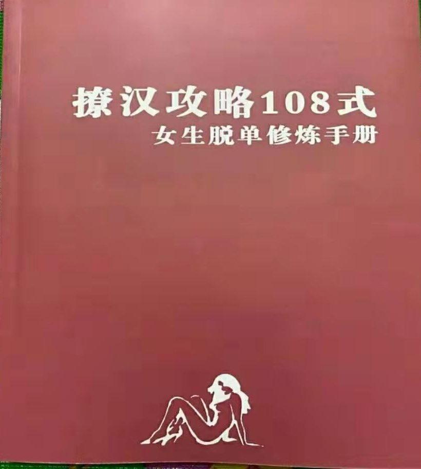 撩汉全攻略108式电子书